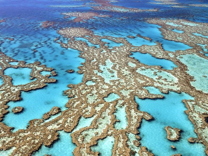 3-Большой Барьерный риф в Австралии