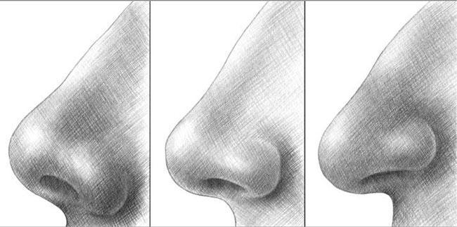 Якої форми твій ніс? Дізнайся, що твій ніс говорить про твій характер