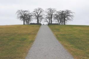 grass-trek-1024x683