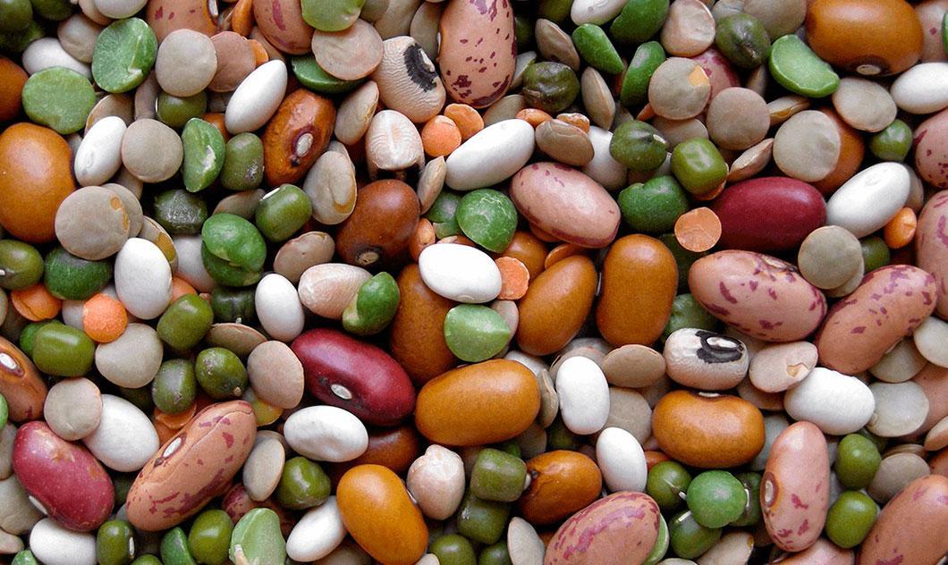 сушеные бобы