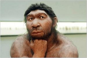 neandertalec1