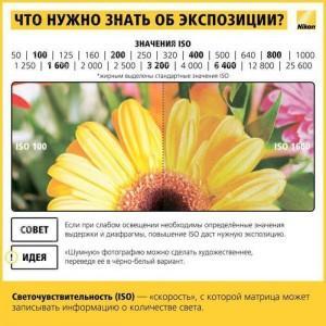 content_shpargalka_fotografu6__econet_ru