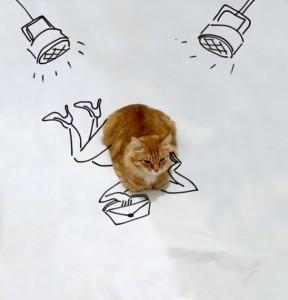 Дорисуй кота: В интернете набирает обороты новый тест на творческие способности