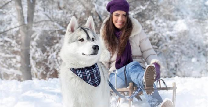 50 дел, которые нужно успеть сделать зимой