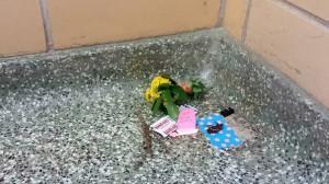 В подъезде техасского университета умер таракан