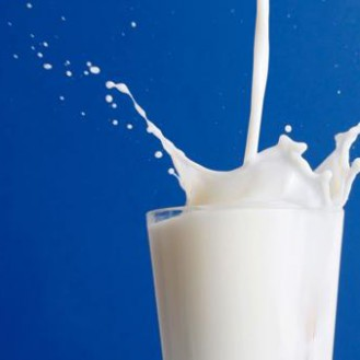 Как молоко прокралось в наш ежедневный рацион