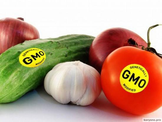 Просто откажитесь от них! Черный список продуктов содержащих ГМО