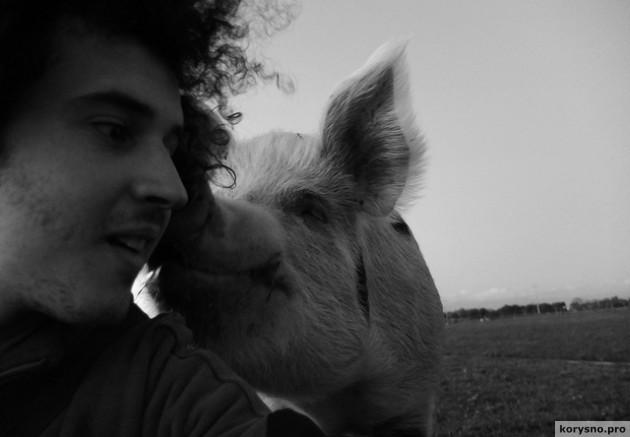 5 причин стать вегетарианцем