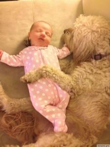 Родители оставили младенца с собакой5