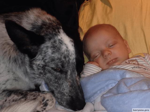 Родители оставили младенца