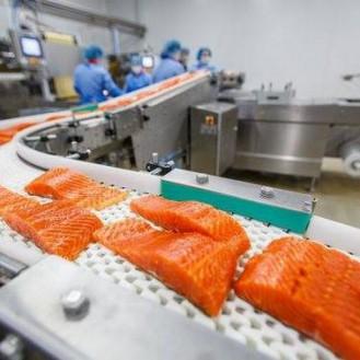 Токсиколог Норвежский лосось — самая токсичная еда во всём мире