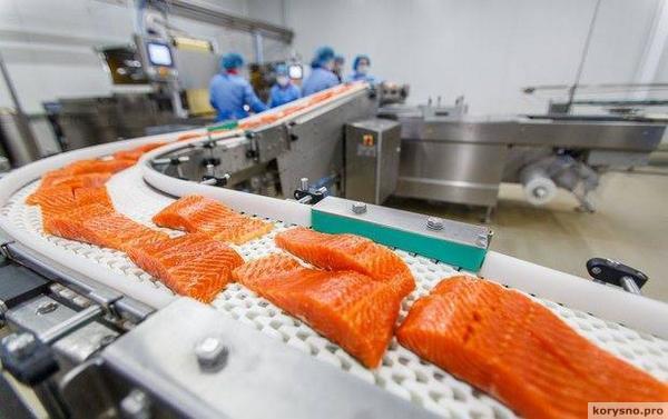 Токсиколог: «Лосось — самая токсичная еда во всём мире»