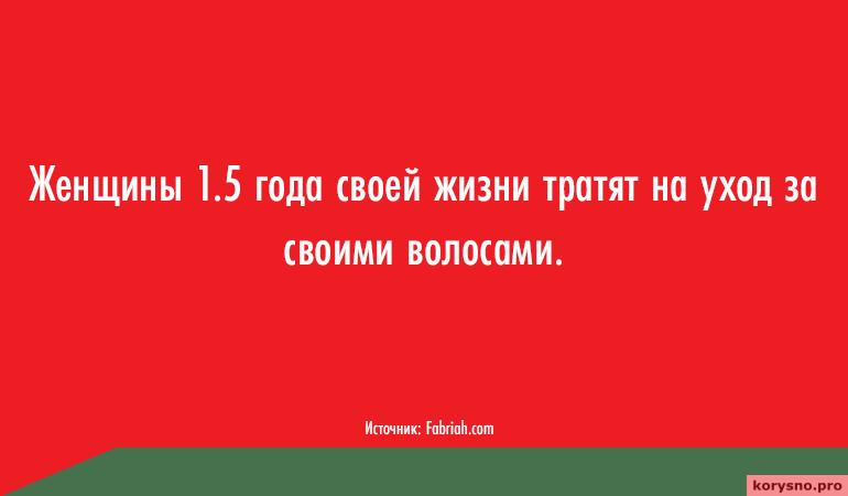 kuda-uhodit-zhizn-skolko-vremeni-my-tratim-na-potselui-son-tualet-seks-i-drugie-zanyatiya-17