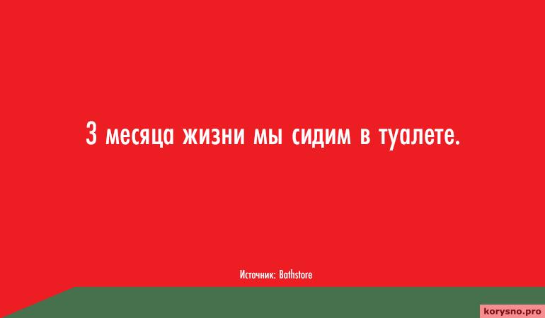 kuda-uhodit-zhizn-skolko-vremeni-my-tratim-na-potselui-son-tualet-seks-i-drugie-zanyatiya-21