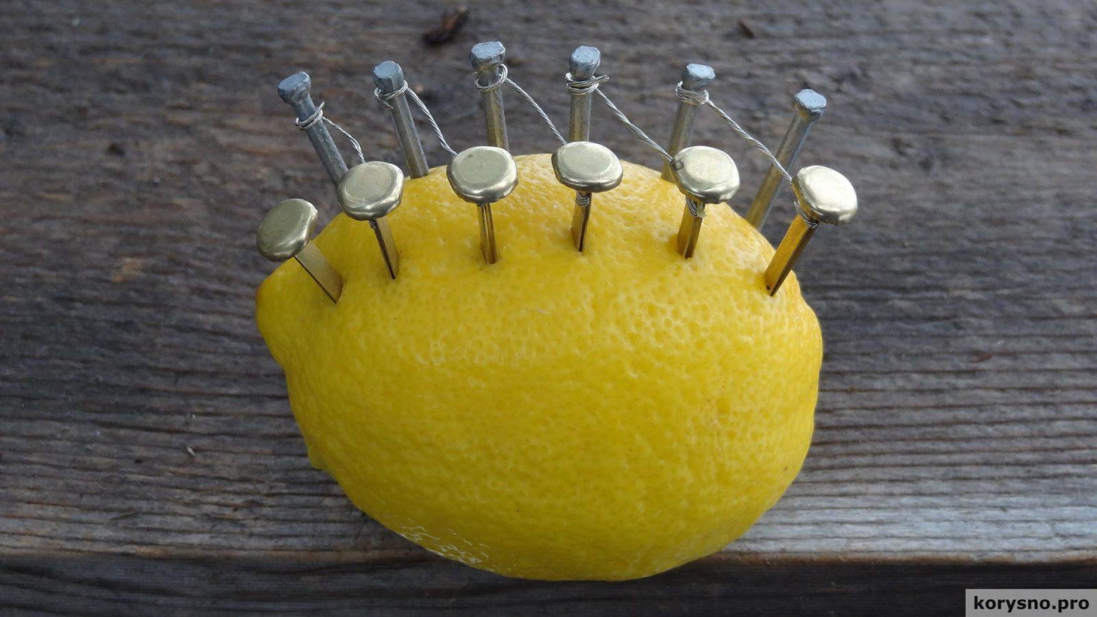 Он воткнул в лимон гвозди и кнопки. Через несколько минут произошло нечто потрясающее!