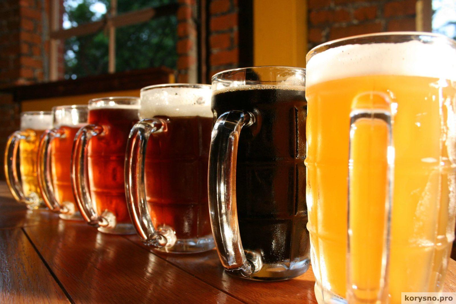 10 научных причин, почему пить пиво — полезно, а не вредно