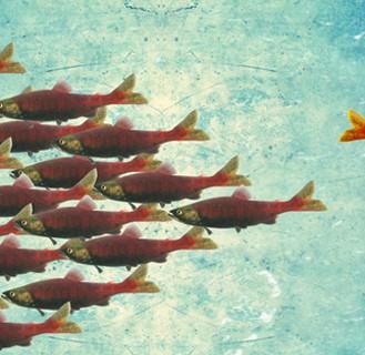 Против течения: 10 оригинальных способов начать мыслить по-другому и «расшевелить» себя