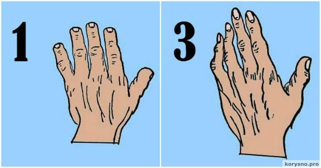 7 типов ладоней. Какой из них ваш?