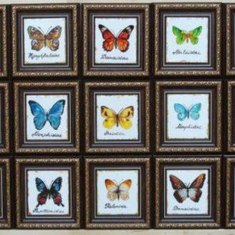 10 самых необычных коллекций