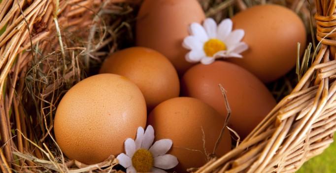 Почему одни куриные яйца белые, а другие коричневые?