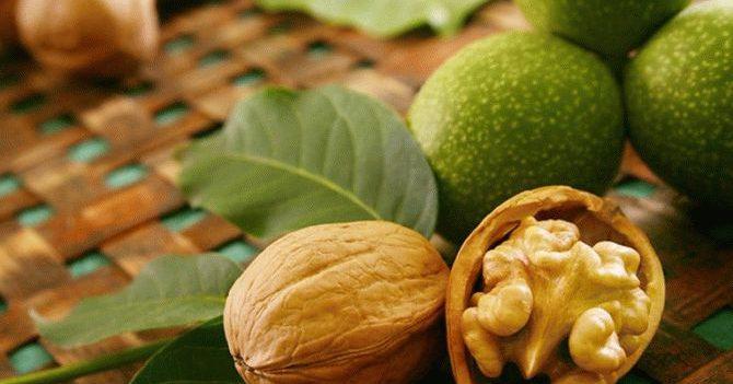 Уникальный секрет пророщенного ореха