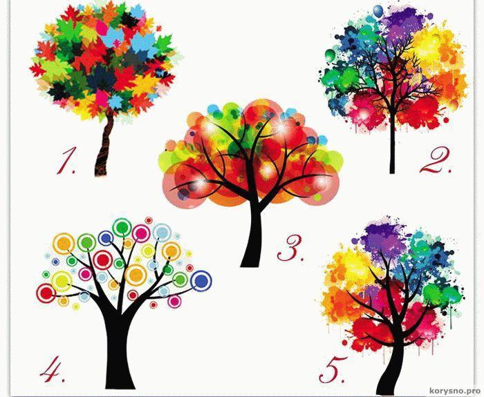 Выбрав дерево вы можете узнать кое-что интересное о себе