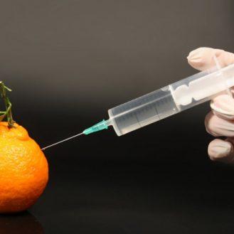 Ученые обнаружили, что ГМО безвредно для человека