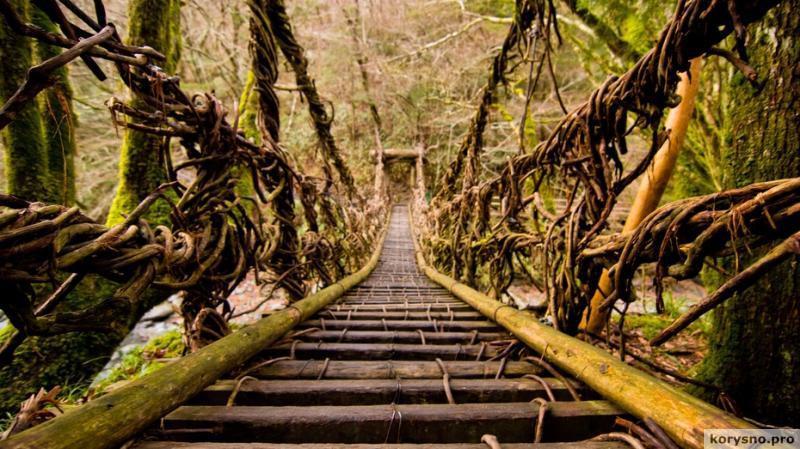 Самые страшные смотровые площадки, тропы и мосты на планете