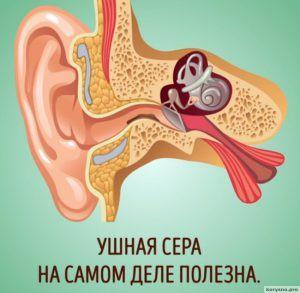 Почему нельзя чистить уши ватными палочками5