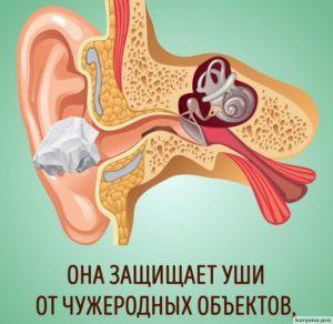 Почему нельзя чистить уши ватными палочками6