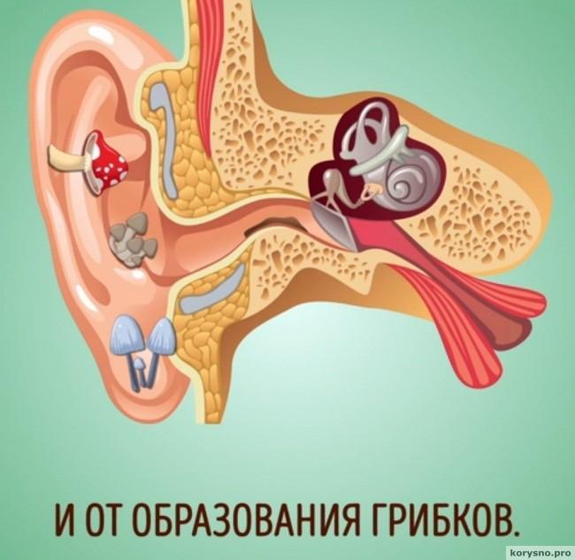 Почему нельзя чистить уши ватными палочками8