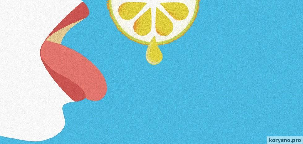 Аппетитные иллюзии: как обмануть свой желудок и вкусовые рецепторы
