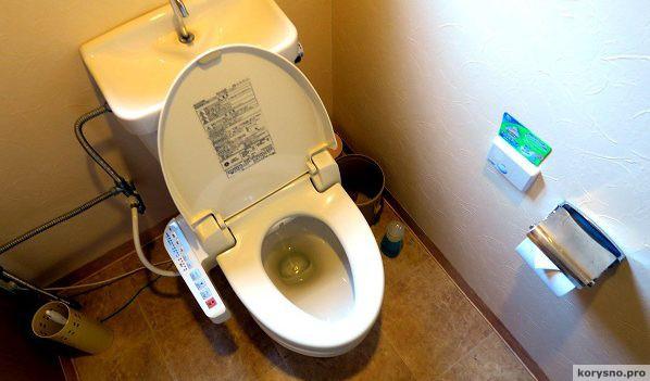 Толчок к развитию. Как устроены японские hi-tech туалеты