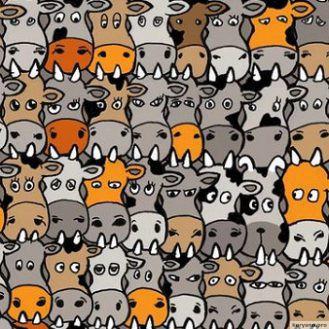 Свежая загадка, покорившая Интернет а вы найдете собаку в стаде коров