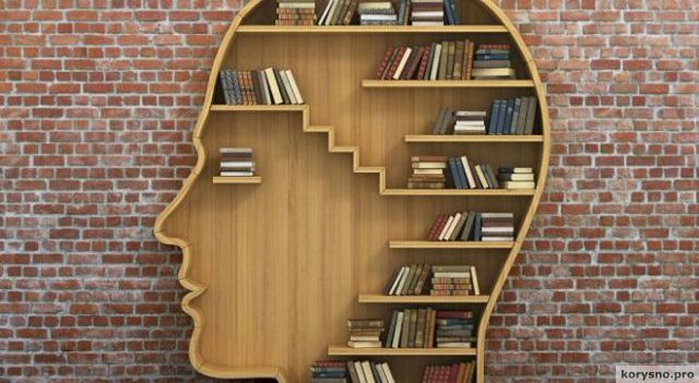 10 хороших книг, которые читаются за одну ночь