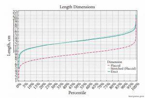 Ученые определили среднюю длину полового члена у мужчин всей планеты