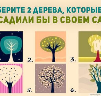 Выбери 2 дерева, которые ты посадил бы в своем саду, и узнай потайную сторону своей души
