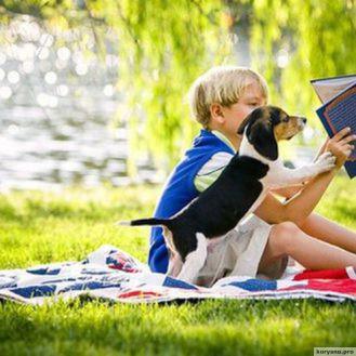 Список книг рекомендованих до читання дітям та підліткам