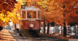 20 мест, где осень невероятно прекрасна