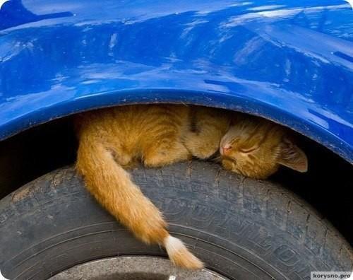 Обращение ко всем водителям в преддверии холодов