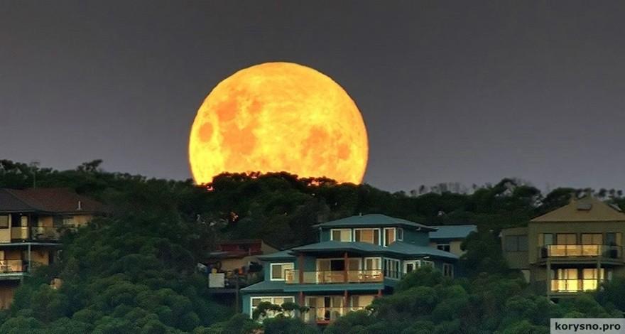 14 ноября в небе будет самая большая Луна за последние 70 лет!