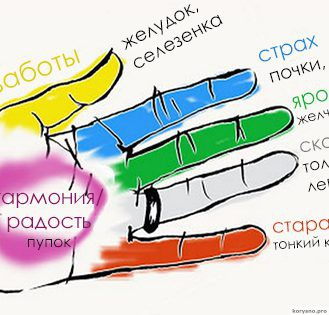Каждый палец руки связан с двумя органами тела: японская 5-минутная методика исцеления!