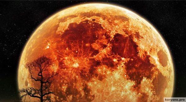 Самое яркое с 1948 года: в ноябре землян ждёт большое суперлуние