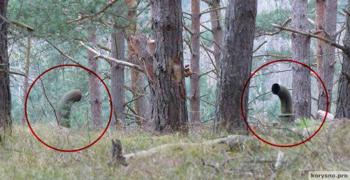 Они гуляли по лесу и увидели эти трубы. То, что находилось под ними, повергло их в ужас (30 фото)