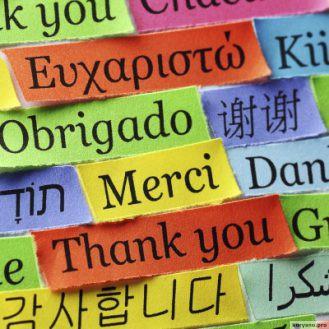 Как всё же выучить иностранный язык. Мануал