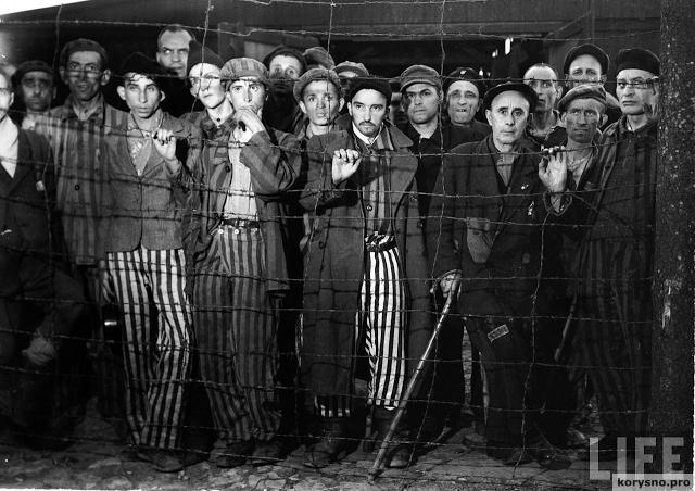 Самое известное холокостное фото оказалось подделкой
