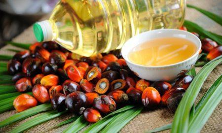 25 шокирующих фактов о пальмовом масле