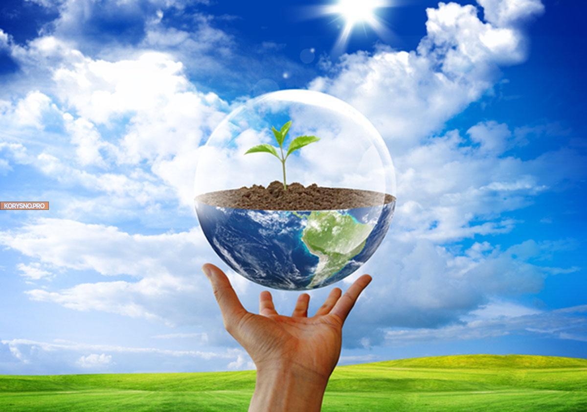10 принципов безотходного образа жизни для тех, кто хочет спасти Землю