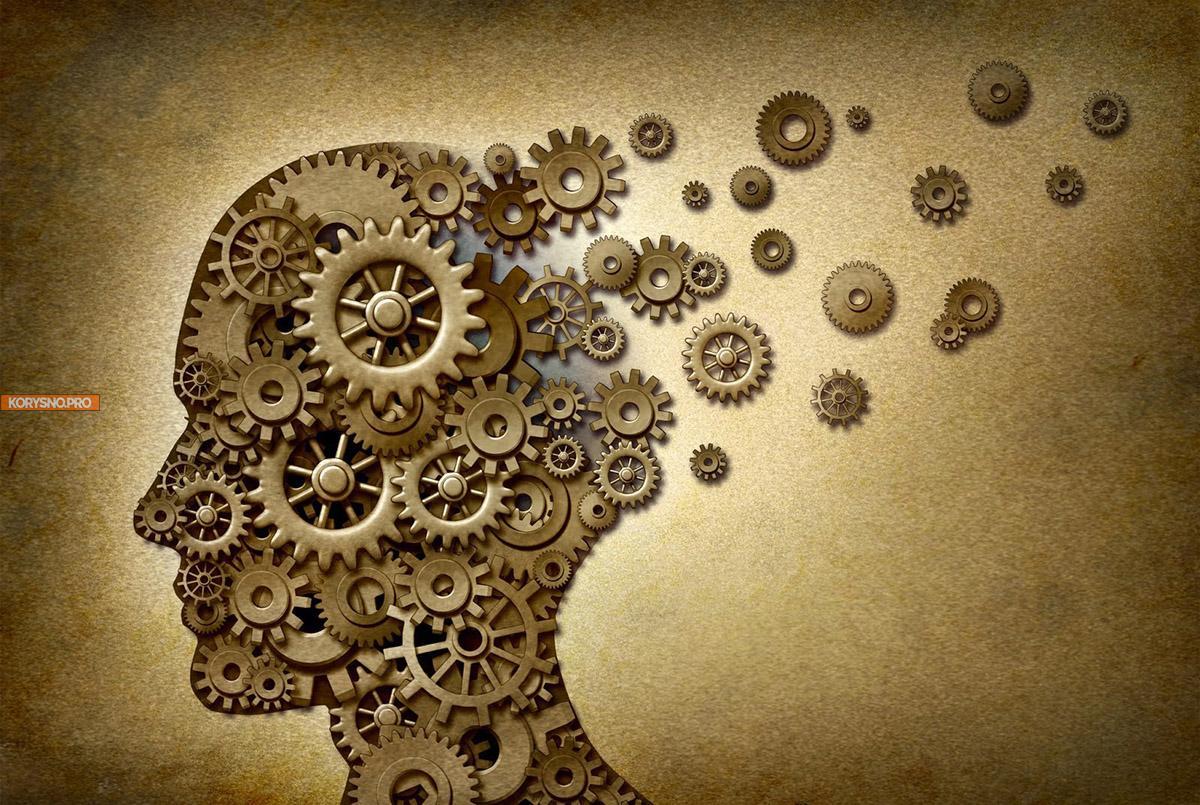 Как философия помогает в повседневной жизни
