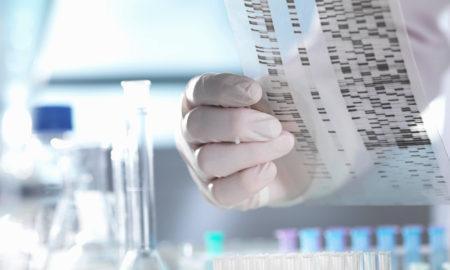 Что можно узнать о себе из ДНК-теста